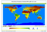 World maps of climatological net primary production of biomass, NPP