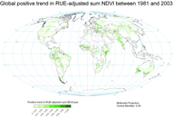 Global Positive Trend of RUE-Adjusted NDVI (1981-2003)