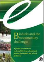 Biofuels and the sustainability challenge: A global assessment of sustainabilty issues, trends and policies for biofuels and related feedstocks