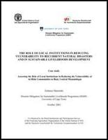 FAO. 2003. Assessing the Role of Local Institution in Reducing the Vulnerability of At-Risk Communities in Buzi, Central Mozambique. South Africa, DIMP, FAO,GTZ