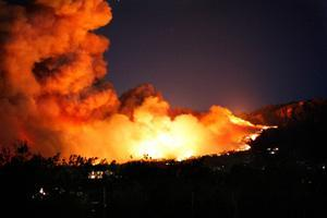 ASIA: Unquantifiable damage caused by wildfires