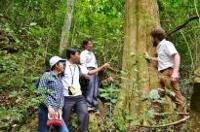 Vietnam NFA Project on FAO Vietnam website