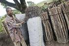 Greening wood energy is key to mitigate climate change and improve rural livelihoods