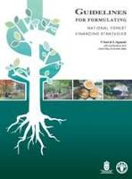 Guidelines for formulating national forest financing strategies
