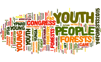 Youth at the 14th World Forestry Congress