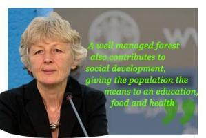 Eva Muller, FAO: A well managed forest also contributes to social development, giving the population the means to an education, food and health