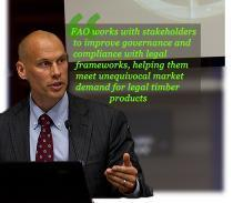 Robert Simpson, EU FAO FLEGT Programme: FAO works with stakeholders to improve governance and compliance with legal frameworks, helping them meet unequivocal market demand for legal timber products