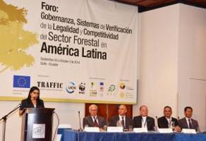 Foro sobre gobernanza, sistemas de verificación de la legalidad y competitividad del sector forestal en América Latina
