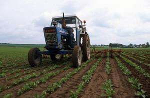 Nouvelles estimations des émissions de gaz à effet de serre dans l'agriculture