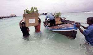 Le développement durable des Petits états insulaires en développement, un test décisif pour le monde