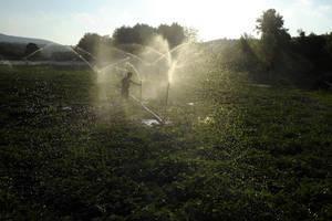 En 2050, la disponibilité en eau diminuera dans certaines parties du monde, menaçant la sécurité alimentaire