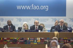 Eradication de la faim, nutrition et changement climatique, autant de priorités majeures pour la FAO