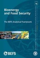 No. 16 - Bioenergy and Food Security - The BEFS Analytical Framework