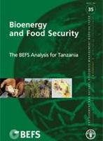 No 35 - Bioenergy and Food Security. The BEFP Analysis for Tanzania