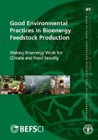 No 49 - Good Environmental Practices in Bioenergy Feedstock Production
