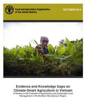Evidence and Knowledge Gaps on Climate Smart Agriculture in Vietnam