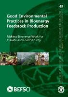 Good Environmental Practices in Bioenergy Feedstock Production
