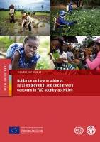 Guidance on how to address rural employment and decent work concerns in FAO country activities