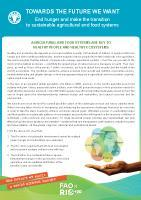 Towards the Future We Want - End Hunger and make the transition to sustainable agricultural and food systems - Brochure