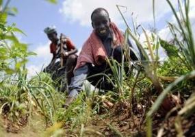 Akuta hungersnöden i Somalia över, men tillståndet fortfarande kritiskt