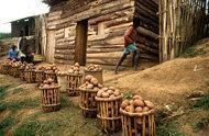 FAO utlyser internationell fotografitävling