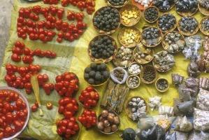 Biodiversitet kan förhindra livsmedelskatastrofer i världen