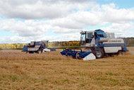 Utan tillräckliga åtgärder kan de höga matpriserna hindra tillväxten inom jordbruket i övergångsländer