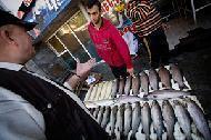 Fiskekris i Centralasien