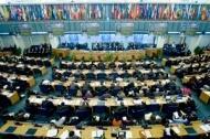 FAO:s medlemsländer antar reformplan för $US 42,6