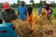 Italien bidrar med 10 miljoner euro till jordbruksutveckling