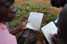 Ökat hopp för Afrikas hungriga föräldralösa barn