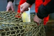 Avtal kommer att stänga hamnar för illegalt fiske