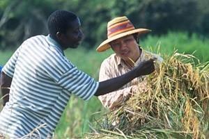 Kina och FAO i historiskt samarbete