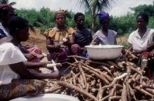 Stöd till Ghanas kamp mot hunger