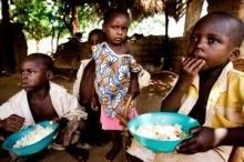 FAO och OECD understryker vikten av investeringar för att motverka hungern