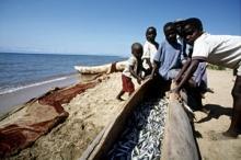 Klimatförändring, fiske och vattenbruk: vi måste agera nu