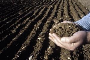 Jordbruket avgörande för det nya klimatavtalet
