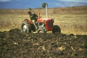 Landsbygdsutveckling i Balkanländerna