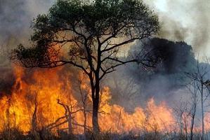 Problemet med okontrollerade bränder