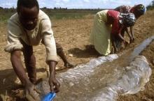 2050: Två miljarder fler munnar att mätta
