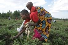2050 – Afrikas matutmaningar