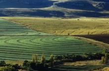 Stärkta markrättigheter - ett viktigt verktyg för att bekämpa hungern