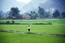 Jordbrukarna kan bidra till att minska de globala utsläppen