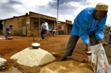De fattigaste länderna lider fortfarande av höga matpriser