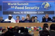 Världstoppmötets slutsatser: jordbrukssatsningar ska utrota hungern