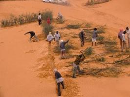 FAO-projekt hindrar ökenspridning i Afrika