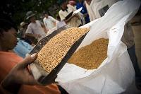 Högre livsmedelspriser förväntas under de kommande tio åren, osäker tillgång till mat fortsatt skäl till oro