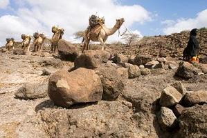 Klimatförändringen hot mot Afrika