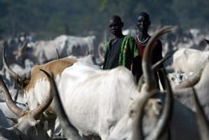 Fler länder vidtar åtgärder för att skydda den djurgenetiska mångfalden