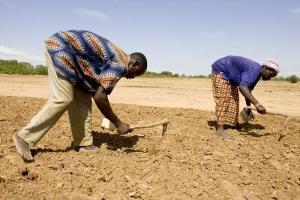 Fokus på genusskillnader beträffande markrättigheter